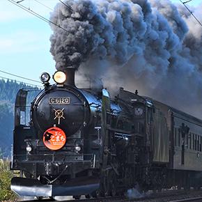 旧型客車「男鹿なまはげ号」「SLこまち号」、現美新幹線など季節の鉄道風景~2018秋~
